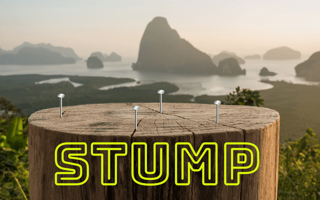 Stump: Outdoor Hammer Drinking Game Rules and Really Stupid Review