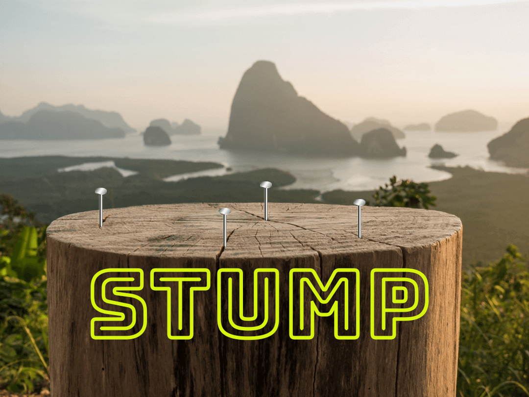 Stump The Ultimate Tailgate and Backyard Drinking Game